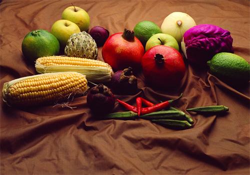 Вегетарианството като начин на живот