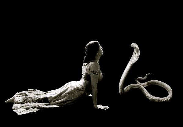 поза кобра в йога