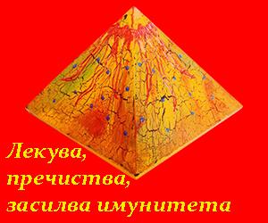�ек�ва, п�е�и��ва, за�илва им�нна�а �и��ема